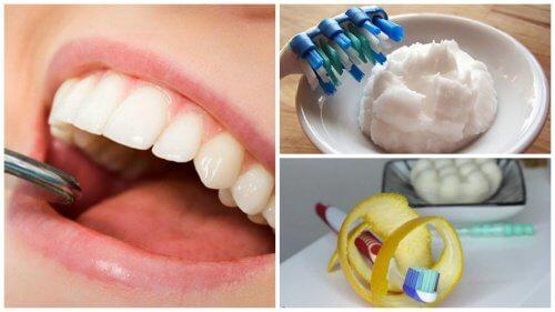 消除牙菌斑的 5 種家庭秘方