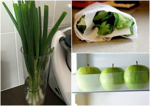 九種延長食物保鮮的妙招