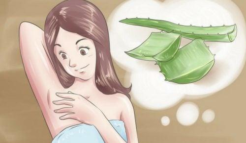 告別腋下異味的五種天然除臭劑