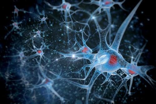 預防神經退化性疾病
