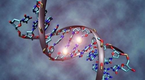 癌症有遺傳性嗎?