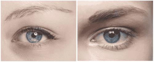 天然妙方解決眉毛稀疏的問題