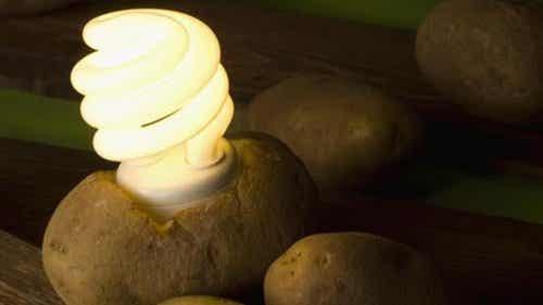來看看如何製作馬鈴薯燈