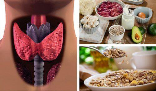 用可加速新陳代謝食物對抗甲狀腺機能低下症
