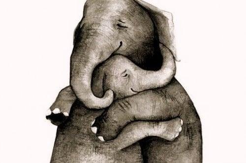 擁抱一切你發現的美好事物並保存起來
