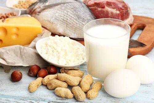 攝取蛋白質