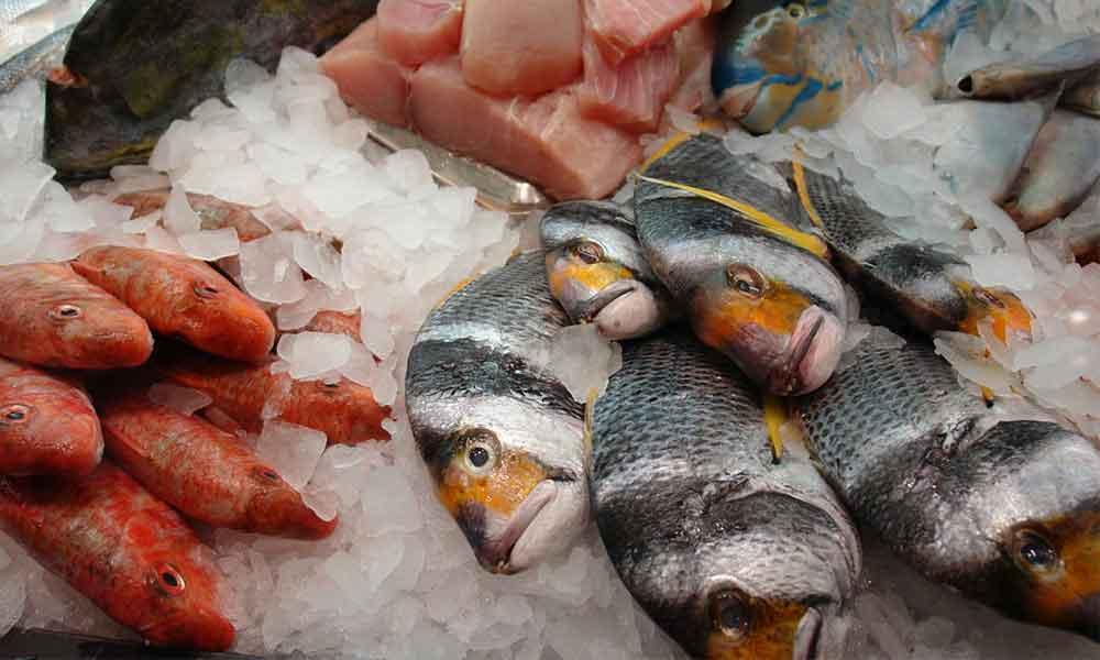汞污染的魚