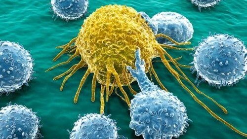 可治療卵巢癌和胰腺癌的創新分子