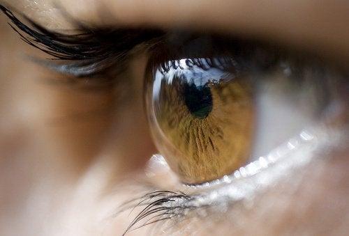 八種治療針眼的有效療法
