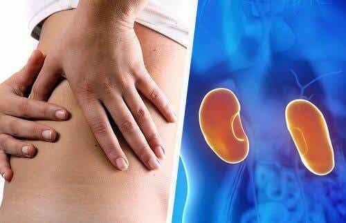 腎臟出問題的八個重要徵兆
