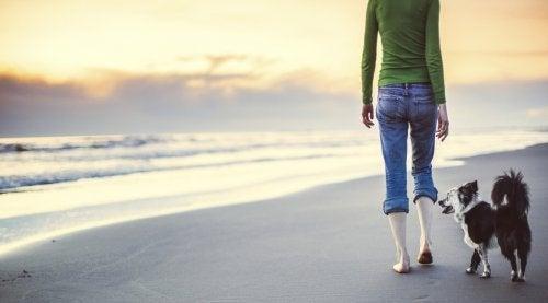 和狗走在沙灘上