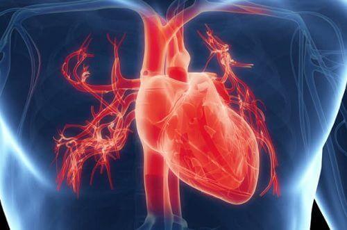 心臟運作不正常的七種指標症狀