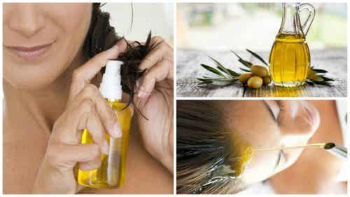 橄欖油美髮六招