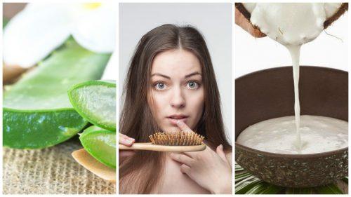 6種居家療法解決掉髮問題
