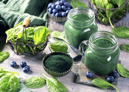 瞭解螺旋藻令人難以置信的健康好處