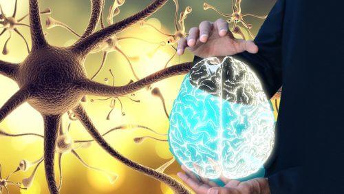 為了身體健康如何喚醒你的迷走神經