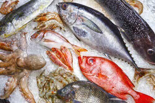 該避免的九種不健康的魚