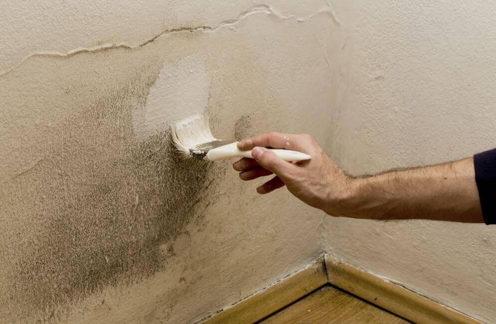 5種去除家中濕氣的方法