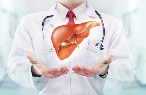 淨化肝臟和大腸