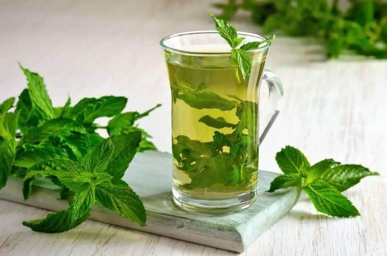 發現薄荷茶的多種健康特性
