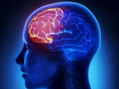 四種練習讓你在年老時保持頭腦清醒