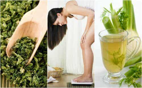 用這5種藥用植物幫助減重