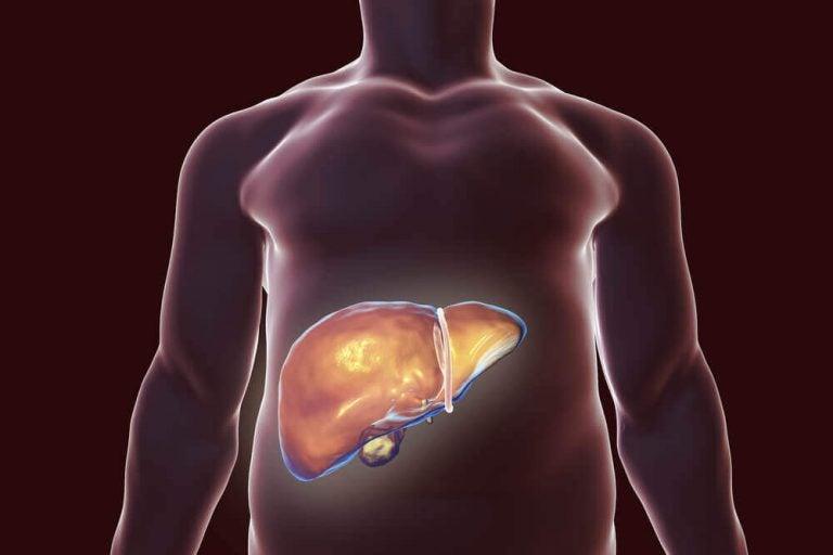 幫助肝臟排毒的最佳自然療法