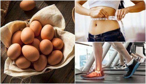 飲食中加入雞蛋的7個好理由