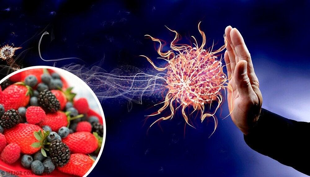 增強免疫系統的9種食物