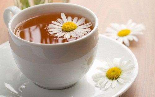 洋甘菊茶1