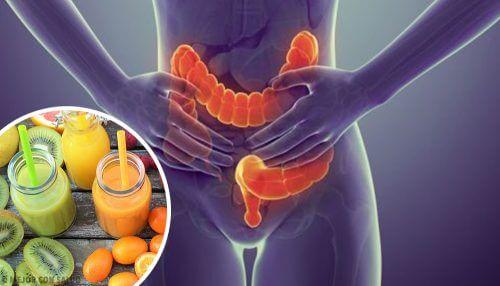 淨化結腸的5種理想食物