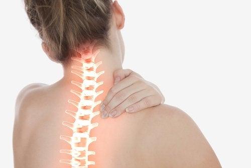 脊椎與肩痛