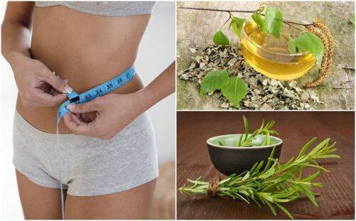 8種幫助減重的健康花茶