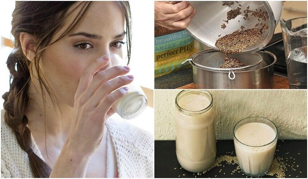 金絲雀種子植物奶:這是什麼以及如何製作