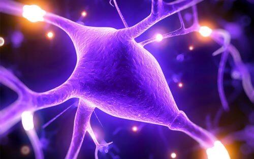 鎂有助於提高心智能力的5個原因