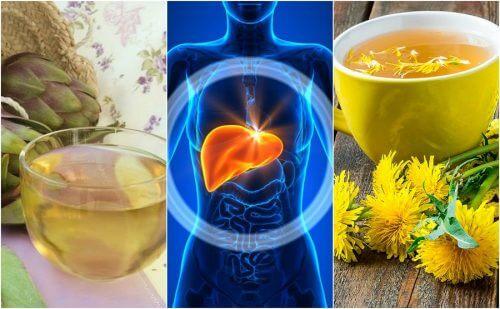 五種對抗脂肪肝的花茶