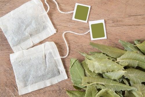 印度苦楝樹茶