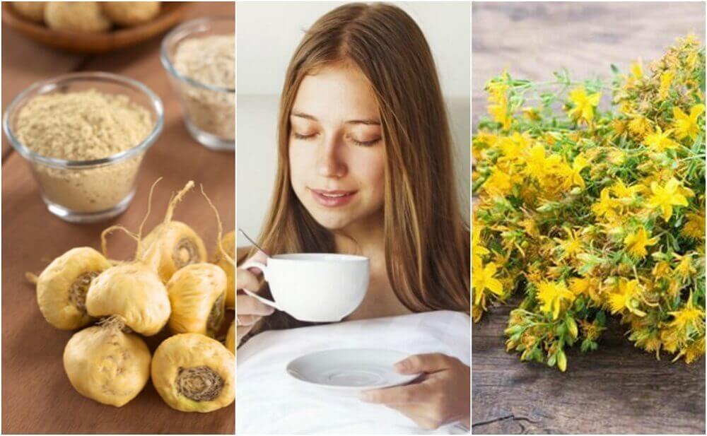 增進性慾的5種藥用植物