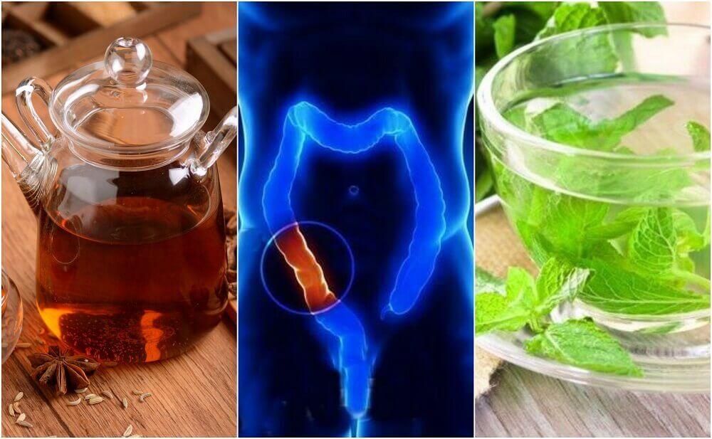 如何泡製5種藥飲,自然淨化結腸