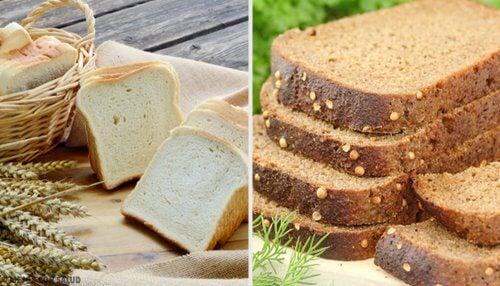 白麵包和全麥麵包:哪種比較好呢?