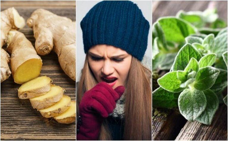 5種植物療法幫你擺脫痰的困擾