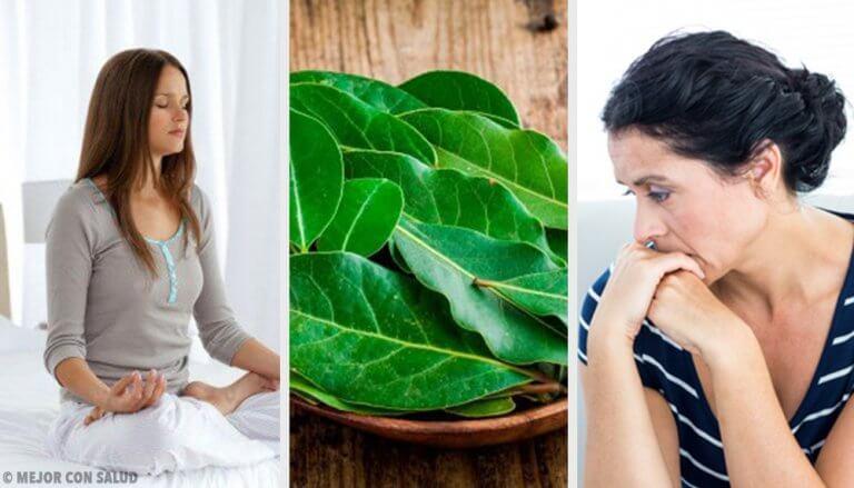 7件你不知道月桂葉為健康所做的事