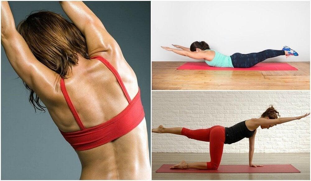 5種背部無重量運動