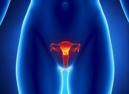 卵巢癌要如何偵測?