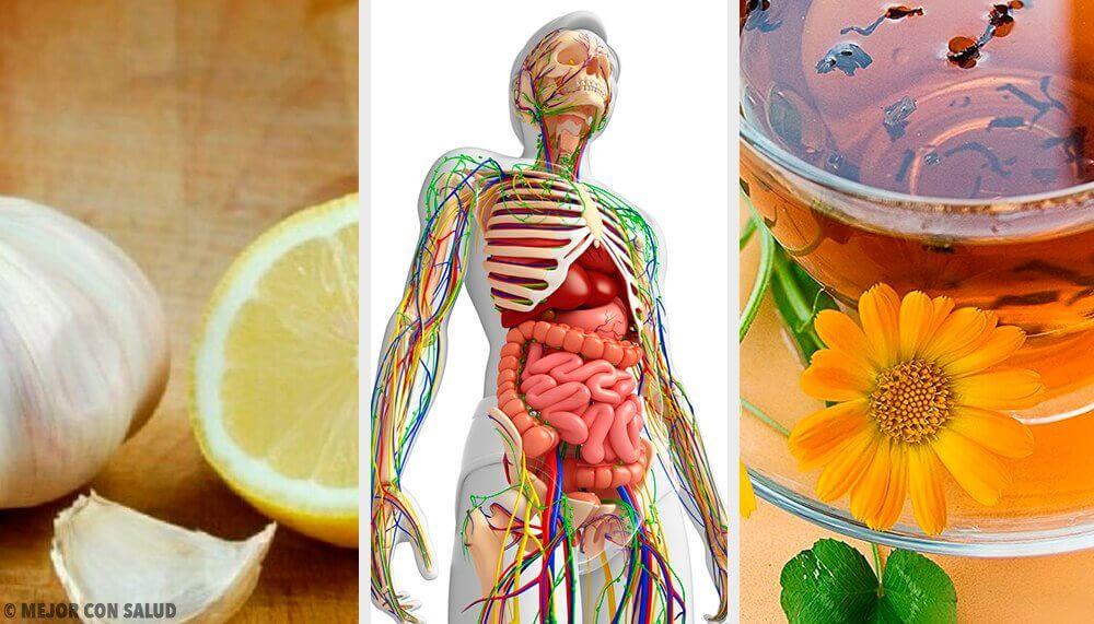 為淋巴系統排毒的6種自然療法