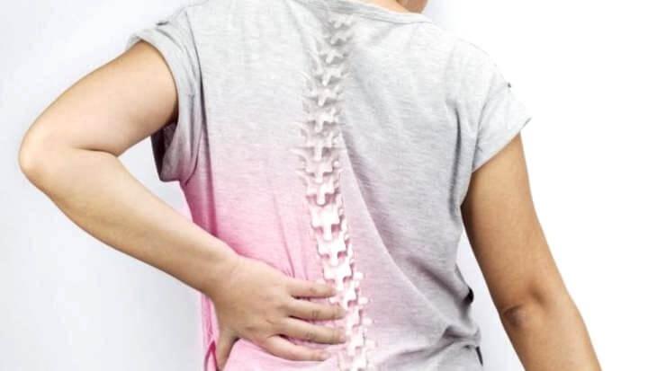 脊椎與腰痛