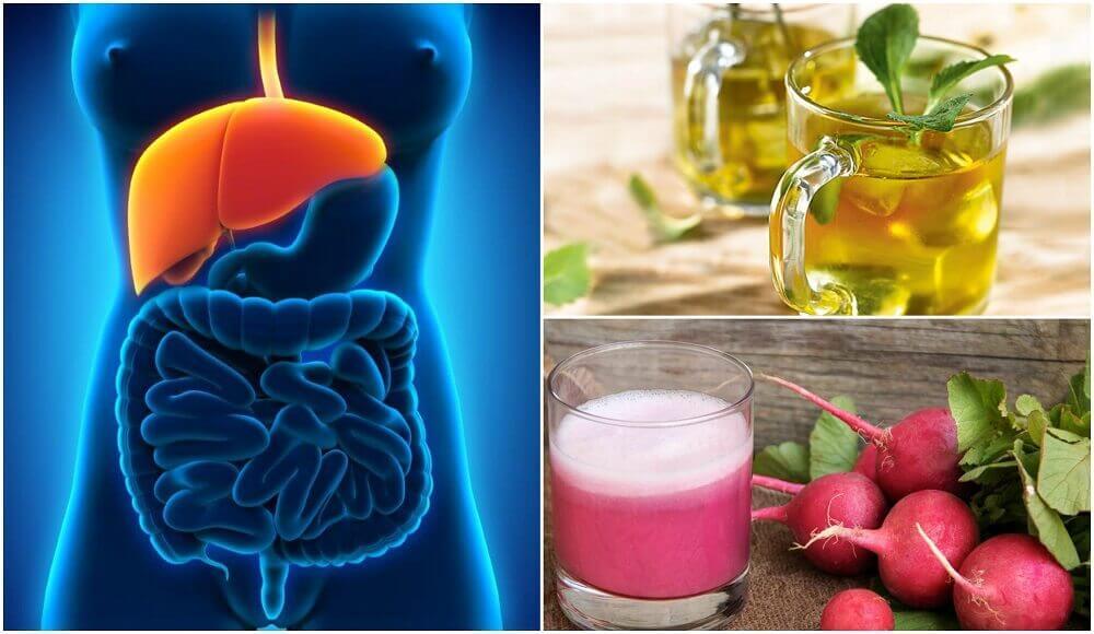 探索如何天然地治療脂肪肝