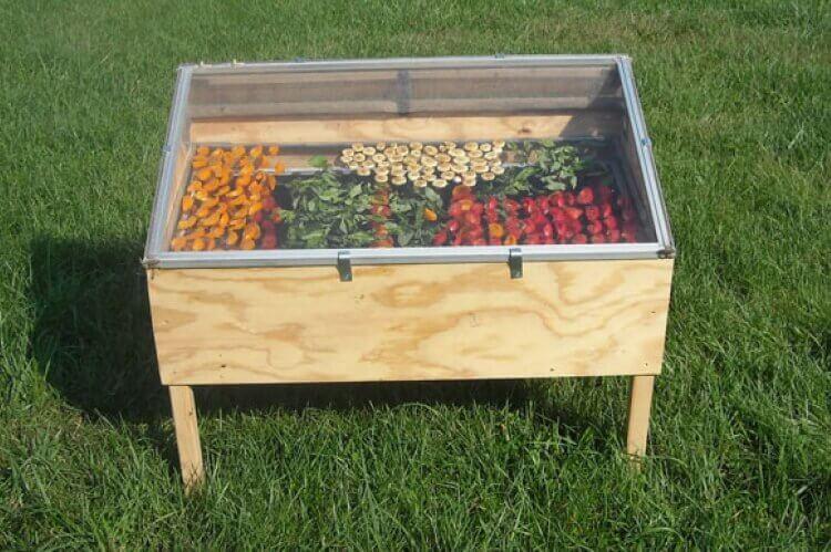 如何製作自己的食物日曬脫水箱