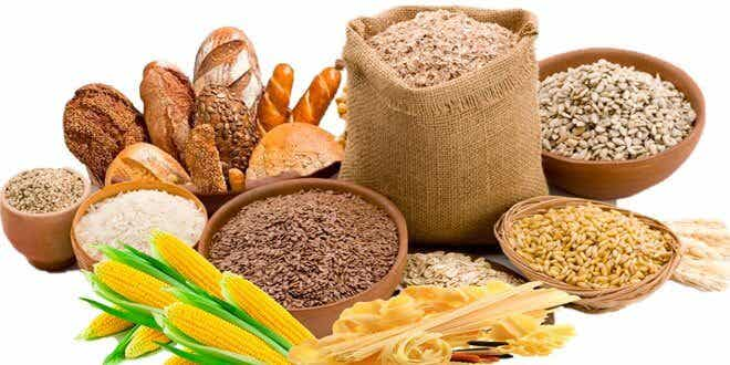 四種幫你減重的冬季食品