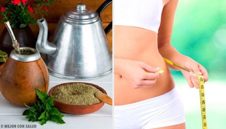 瑪黛茶的效益:它能幫你減重嗎?
